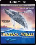 Click for detailed review of HUMPBACK WHALES IMAX (4K UHD/3-D BLU-RAY/DIGITAL COPY)