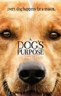 Click for detailed review of DOG'S PURPOSE, A
