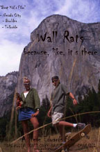 WALL RATS cover image
