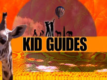 KID GUIDES: CERTIFIED KIDS CAMP CURACAO cover image