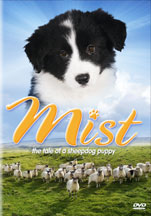 MIST: THE STORY OF A SHEEPDOG PUPPY cover image