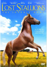 LOST STALLIONS! THE JOURNEY HOME cover image