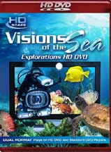 VISIONS OF THE SEA cover image