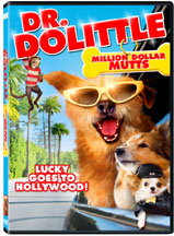 DR. DOLITTLE: MILLION DOLLAR MUTTS cover image