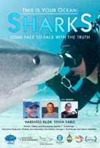 THIS IS YOUR OCEAN: SHARKS cover image