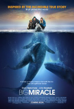 BIG MIRACLE cover image
