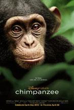 CHIMPANZEE cover image
