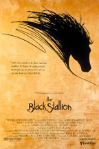 BLACK STALLION, THE (HDNET) cover image
