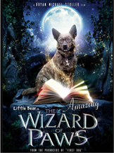 AMAZING WIZARD OF PAWS cover image