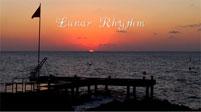 LUNAR RHYTHM cover image