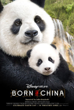 BORN IN CHINA cover image