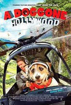 DOGGONE HOLLYWOOD, A cover image