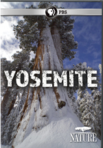 NATURE: YOSEMITE cover image