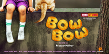 BOW BOW cover image