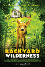 BACKYARD WILDERNESS cover image