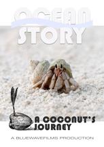 OCEAN STORY- A COCONUT