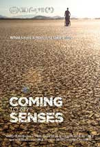 COMING TO MY SENSES cover image